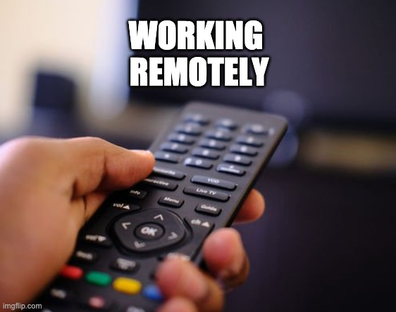 Working Remotely |  WORKING             REMOTELY | image tagged in work,tv,coronavirus,covid-19,netflix,show | made w/ Imgflip meme maker