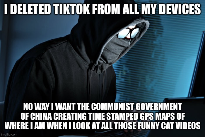 Paranoid |  I DELETED TIKTOK FROM ALL MY DEVICES; NO WAY I WANT THE COMMUNIST GOVERNMENT OF CHINA CREATING TIME STAMPED GPS MAPS OF WHERE I AM WHEN I LOOK AT ALL THOSE FUNNY CAT VIDEOS | image tagged in paranoid,memes,funny,tiktok,illuminati,illuminati is watching | made w/ Imgflip meme maker