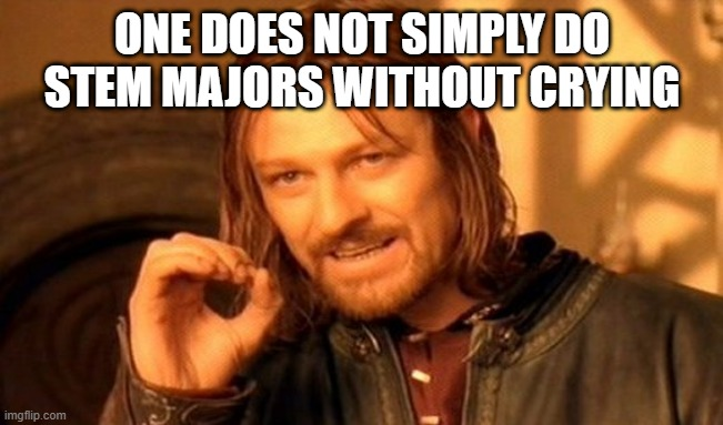 One Does Not Simply Meme |  ONE DOES NOT SIMPLY DO STEM MAJORS WITHOUT CRYING | image tagged in memes,one does not simply,college,stem,chemistry | made w/ Imgflip meme maker