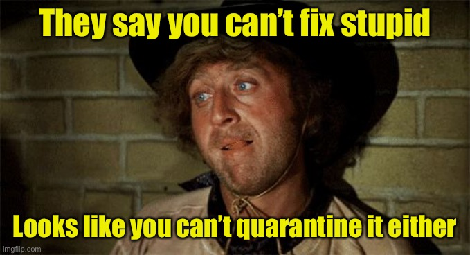 People who don't think stopping the spread applies to them |  They say you can't fix stupid; Looks like you can't quarantine it either | image tagged in gene wilder,covid-19,quarantine,coronavirus | made w/ Imgflip meme maker