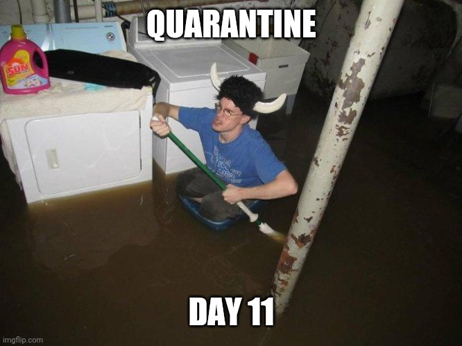Laundry Viking |  QUARANTINE; DAY 11 | image tagged in memes,laundry viking | made w/ Imgflip meme maker