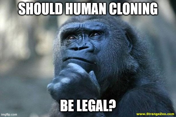 Deep Thoughts |  SHOULD HUMAN CLONING; BE LEGAL? | image tagged in deep thoughts | made w/ Imgflip meme maker