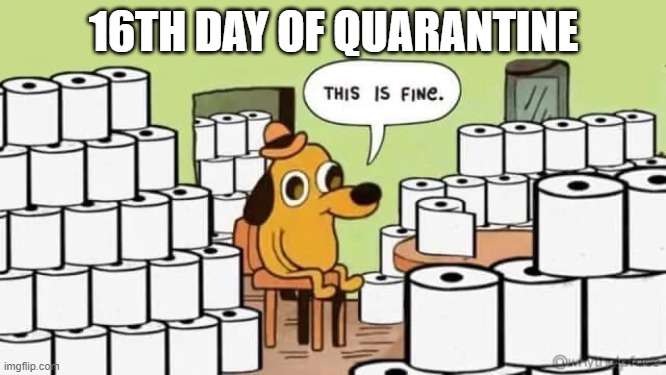 gotta stack em up | 16TH DAY OF QUARANTINE | image tagged in memes,coronavirus | made w/ Imgflip meme maker