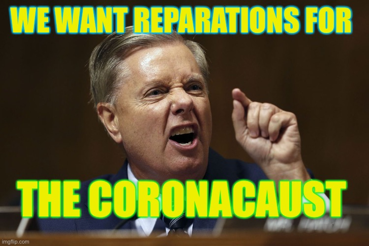 Coronacaust |  WE WANT REPARATIONS FOR; THE CORONACAUST | image tagged in lindsay graham snarling in a hissy fit,coronavirus,covid-19,china,pandemic | made w/ Imgflip meme maker