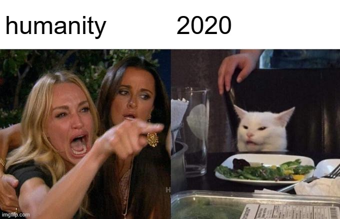 Woman Yelling At Cat Meme |  humanity; 2020 | image tagged in memes,woman yelling at cat | made w/ Imgflip meme maker