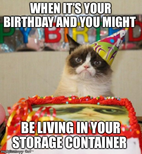 Grumpy Cat Birthday | WHEN IT'S YOUR BIRTHDAY AND YOU MIGHT BE LIVING IN YOUR STORAGE CONTAINER | image tagged in memes,grumpy cat birthday,grumpy cat | made w/ Imgflip meme maker