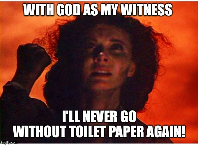 As God is my witness |  WITH GOD AS MY WITNESS; I'LL NEVER GO WITHOUT TOILET PAPER AGAIN! | image tagged in tp,no more toilet paper,gone with the wind,scarlett o'hara,coronavirus | made w/ Imgflip meme maker