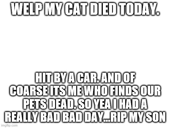 Blank White Template |  WELP MY CAT DIED TODAY. HIT BY A CAR. AND OF COARSE ITS ME WHO FINDS OUR PETS DEAD. SO YEA I HAD A REALLY BAD BAD DAY...RIP MY SON | image tagged in blank white template | made w/ Imgflip meme maker