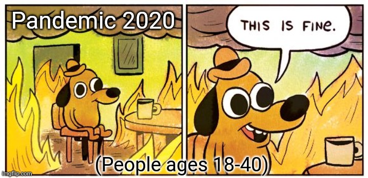 This Is Fine Meme |  Pandemic 2020; (People ages 18-40) | image tagged in memes,this is fine | made w/ Imgflip meme maker
