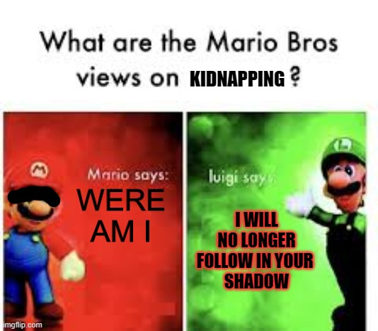KIDNAPPING; WERE AM I; I WILL NO LONGER FOLLOW IN YOUR  SHADOW | image tagged in mario bros views | made w/ Imgflip meme maker