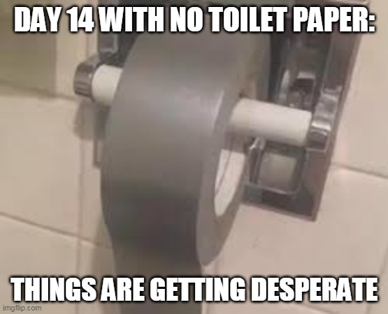Imagine the chafing |  DAY 14 WITH NO TOILET PAPER:; THINGS ARE GETTING DESPERATE | image tagged in duct tape | made w/ Imgflip meme maker