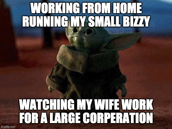 Baby Yoda |  WORKING FROM HOME RUNNING MY SMALL BIZZY; WATCHING MY WIFE WORK FOR A LARGE CORPERATION | image tagged in baby yoda | made w/ Imgflip meme maker