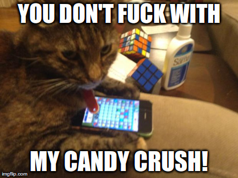 Funny Memes For A Crush : Cat candy crush imgflip