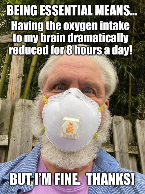 Being Essential |  BEING ESSENTIAL MEANS... Having the oxygen intake to my brain dramatically reduced for 8 hours a day! BUT I'M FINE.  THANKS! | image tagged in essential,coronavirus,working,covid-19,government | made w/ Imgflip meme maker