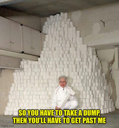 Toilet paper grandma |  SO YOU HAVE TO TAKE A DUMP, THEN YOU'LL HAVE TO GET PAST ME | image tagged in toilet paper,mountain of toilet paper,grandma,coronavirus,memes | made w/ Imgflip meme maker