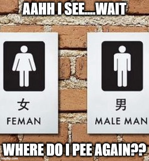 WTF BATHROOM?! |  AAHH I SEE....WAIT; WHERE DO I PEE AGAIN?? | image tagged in bathroom troubles,funny,bathroom,memes,female,male | made w/ Imgflip meme maker