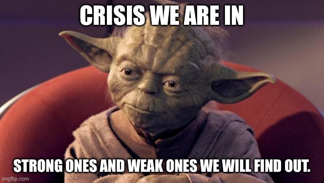 Yoda Wisdom |  CRISIS WE ARE IN; STRONG ONES AND WEAK ONES WE WILL FIND OUT. | image tagged in yoda wisdom | made w/ Imgflip meme maker