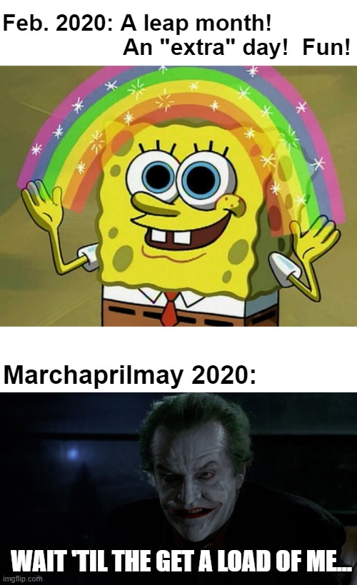 "hindsight is always 2020 |  Feb. 2020: A leap month!                      An ""extra"" day!  Fun! Marchaprilmay 2020:; WAIT 'TIL THE GET A LOAD OF ME... 