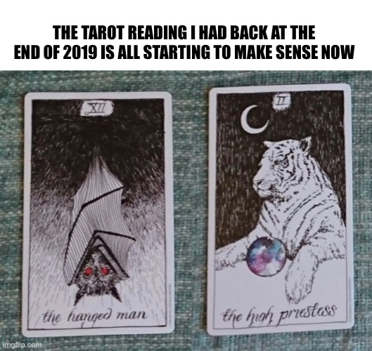 2020 Tarot Reading |  THE TAROT READING I HAD BACK AT THE END OF 2019 IS ALL STARTING TO MAKE SENSE NOW | image tagged in 2020,meme,coronavirus,covid-19,bat,tiger king | made w/ Imgflip meme maker