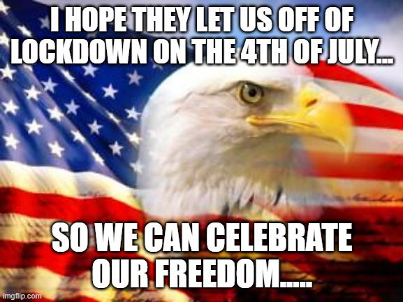 American Flag |  I HOPE THEY LET US OFF OF LOCKDOWN ON THE 4TH OF JULY... SO WE CAN CELEBRATE OUR FREEDOM..... | image tagged in american flag | made w/ Imgflip meme maker