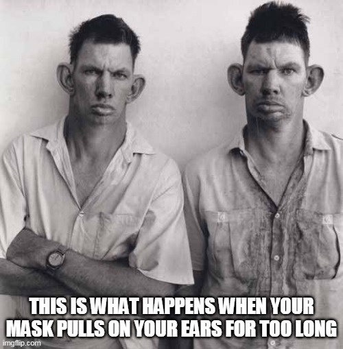 Ears sticking out |  THIS IS WHAT HAPPENS WHEN YOUR MASK PULLS ON YOUR EARS FOR TOO LONG | image tagged in ears,face mask | made w/ Imgflip meme maker
