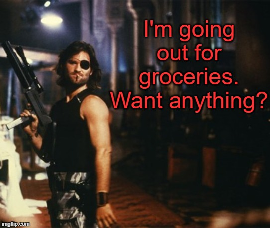 Snake Plissken |  I'm going out for groceries. Want anything? | image tagged in snake plissken,memes,quarantine,covid-19,coronavirus | made w/ Imgflip meme maker
