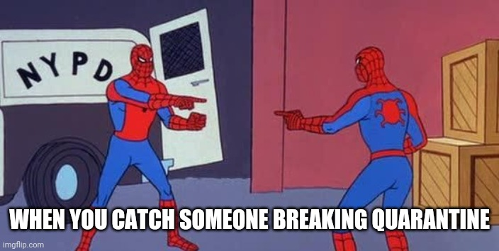 Spider Man Double |  WHEN YOU CATCH SOMEONE BREAKING QUARANTINE | image tagged in spider man double | made w/ Imgflip meme maker