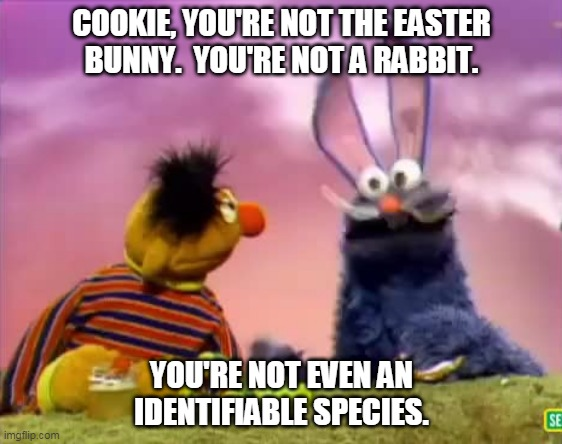 Cookie Bunny |  COOKIE, YOU'RE NOT THE EASTER BUNNY.  YOU'RE NOT A RABBIT. YOU'RE NOT EVEN AN IDENTIFIABLE SPECIES. | image tagged in sesame street,easter,easter bunny,cookie monster | made w/ Imgflip meme maker