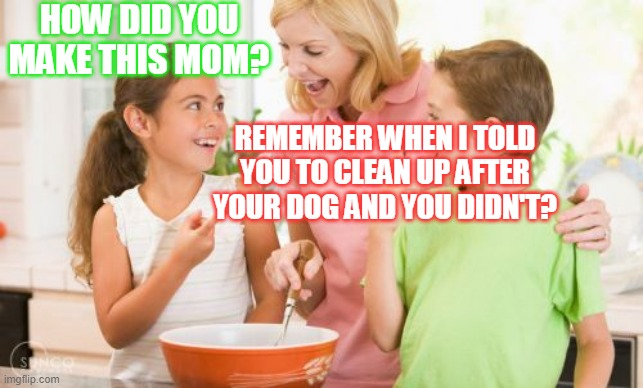 Children, Obey Your Parents |  HOW DID YOU MAKE THIS MOM? REMEMBER WHEN I TOLD YOU TO CLEAN UP AFTER YOUR DOG AND YOU DIDN'T? | image tagged in memes,frustrating mom,mom,dogs,funny,kids | made w/ Imgflip meme maker