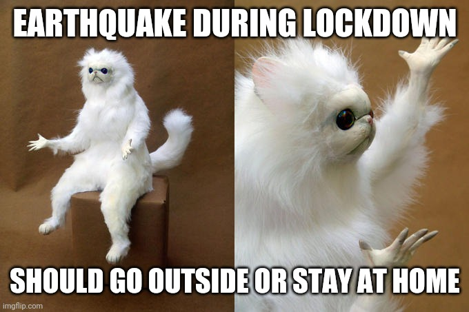 Persian Cat Room Guardian |  EARTHQUAKE DURING LOCKDOWN; SHOULD GO OUTSIDE OR STAY AT HOME | image tagged in memes,persian cat room guardian | made w/ Imgflip meme maker
