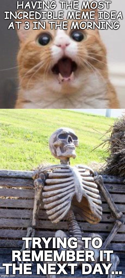Now what was it... |  HAVING THE MOST INCREDIBLE MEME IDEA AT 3 IN THE MORNING; TRYING TO REMEMBER IT THE NEXT DAY... | image tagged in memes,waiting skeleton,wow,idea,3 in the morning,remember | made w/ Imgflip meme maker