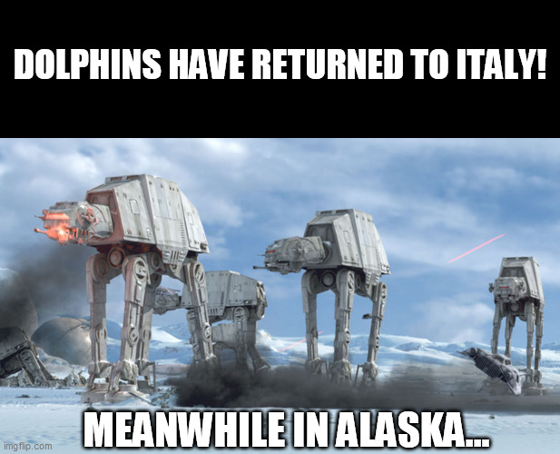Dolphins have returned to Italy! |  DOLPHINS HAVE RETURNED TO ITALY! MEANWHILE IN ALASKA... | image tagged in star wars at-at,dolphins have returned to italy,italy,alaska,star wars,dolphins | made w/ Imgflip meme maker