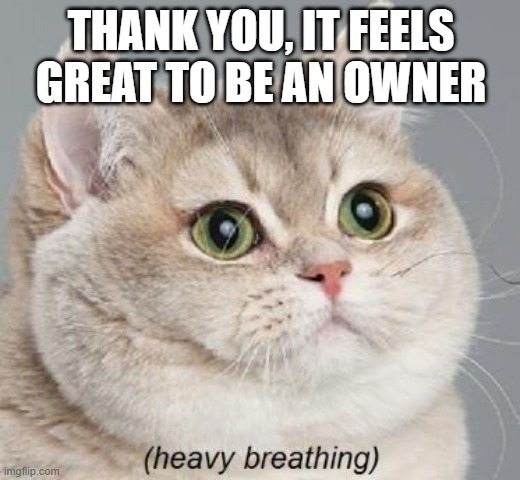 Heavy Breathing Cat Meme | THANK YOU, IT FEELS GREAT TO BE AN OWNER | image tagged in memes,heavy breathing cat | made w/ Imgflip meme maker