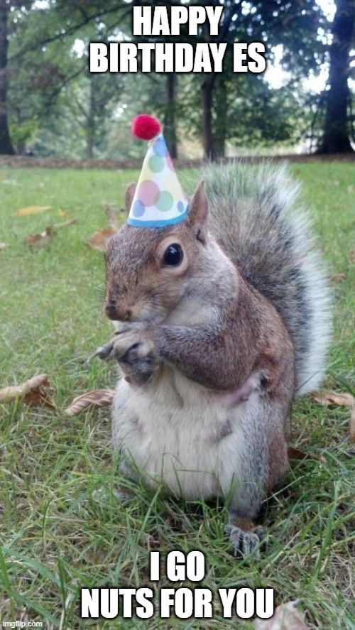 Super Birthday Squirrel |  HAPPY BIRTHDAY ES; I GO NUTS FOR YOU | image tagged in memes,super birthday squirrel | made w/ Imgflip meme maker