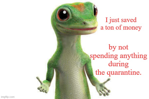 There's that, at least. |  I just saved a ton of money; by not spending anything during the quarantine. | image tagged in geico,covid-19,memes,coronavirus,geico gecko,quarantine | made w/ Imgflip meme maker