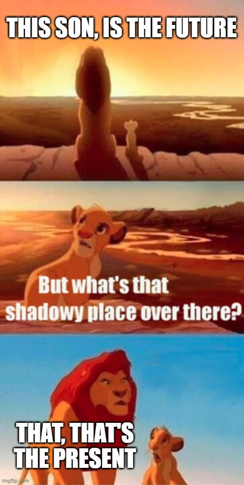 Simba Shadowy Place Meme |  THIS SON, IS THE FUTURE; THAT, THAT'S THE PRESENT | image tagged in memes,simba shadowy place | made w/ Imgflip meme maker