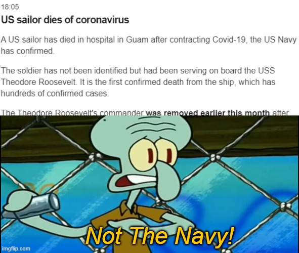 Not the Navy! |  Not The Navy! | image tagged in not the navy,memes,funny,coronavirus,navy | made w/ Imgflip meme maker