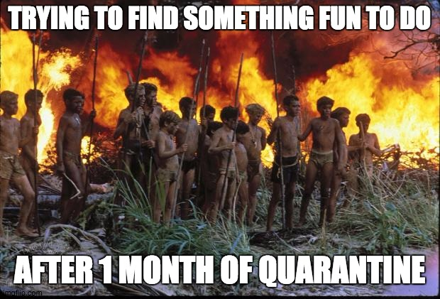 Lord of the flies |  TRYING TO FIND SOMETHING FUN TO DO; AFTER 1 MONTH OF QUARANTINE | image tagged in lord of the flies | made w/ Imgflip meme maker
