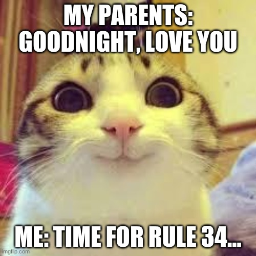 potatos and catshi crazy |  MY PARENTS: GOODNIGHT, LOVE YOU; ME: TIME FOR RULE 34... | image tagged in potatos and catshi crazy | made w/ Imgflip meme maker