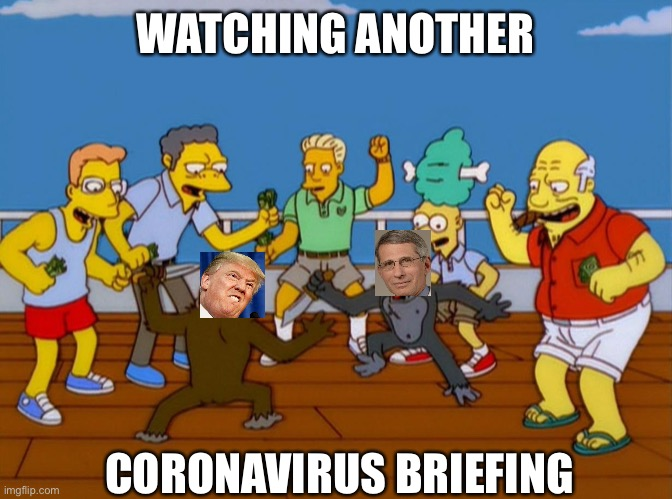 Simpsons Monkey Fight |  WATCHING ANOTHER; CORONAVIRUS BRIEFING | image tagged in simpsons monkey fight | made w/ Imgflip meme maker