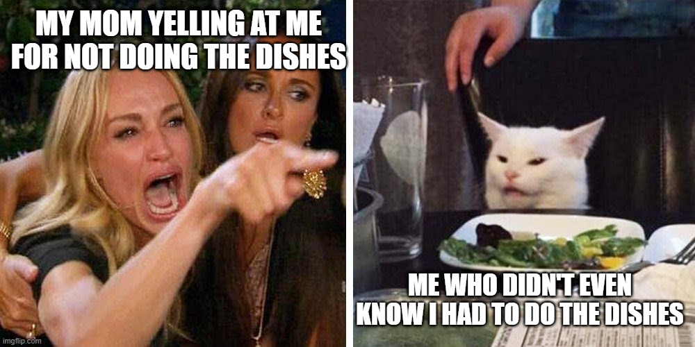 Smudge the cat |  MY MOM YELLING AT ME FOR NOT DOING THE DISHES; ME WHO DIDN'T EVEN KNOW I HAD TO DO THE DISHES | image tagged in smudge the cat | made w/ Imgflip meme maker