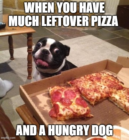 Hungry Pizza Dog |  WHEN YOU HAVE MUCH LEFTOVER PIZZA; AND A HUNGRY DOG | image tagged in hungry pizza dog | made w/ Imgflip meme maker