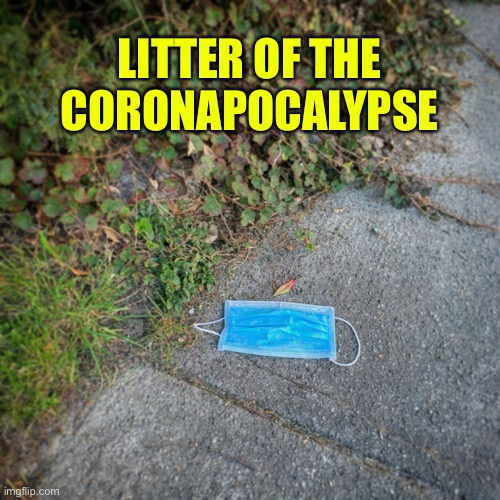 Litter of the Coronapocalypse |  LITTER OF THE CORONAPOCALYPSE | image tagged in coronavirus,face mask,litter | made w/ Imgflip meme maker
