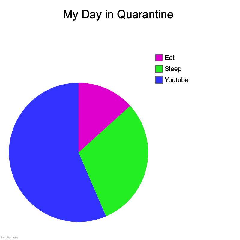 My Day in Quarantine | My Day in Quarantine | Youtube, Sleep, Eat | image tagged in quarantine,covid-19,funny,youtube,everyday | made w/ Imgflip chart maker