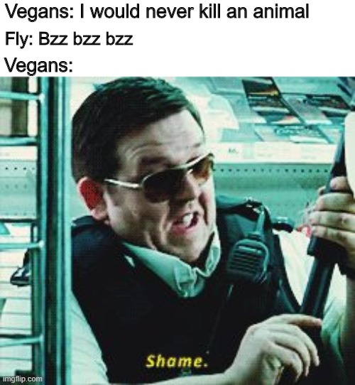 Flies are not animals |  Vegans: I would never kill an animal; Fly: Bzz bzz bzz; Vegans: | image tagged in shame,memes,funny,vegan,fly | made w/ Imgflip meme maker