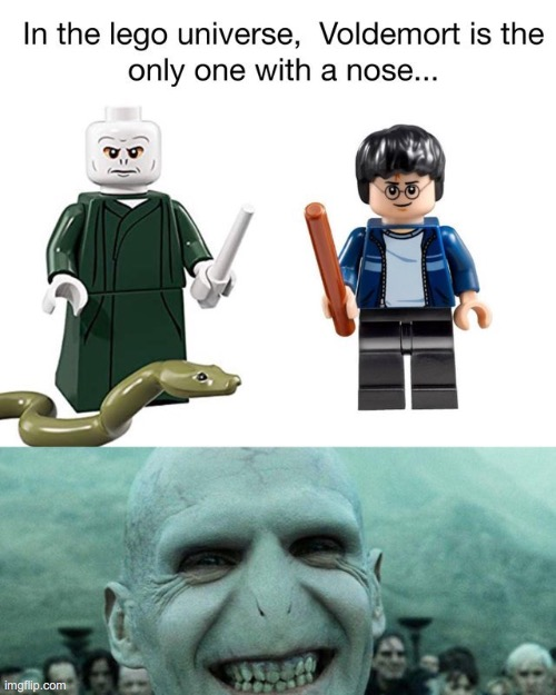 ! | image tagged in voldemort,nose,harry potter,lego,memes,funny | made w/ Imgflip meme maker