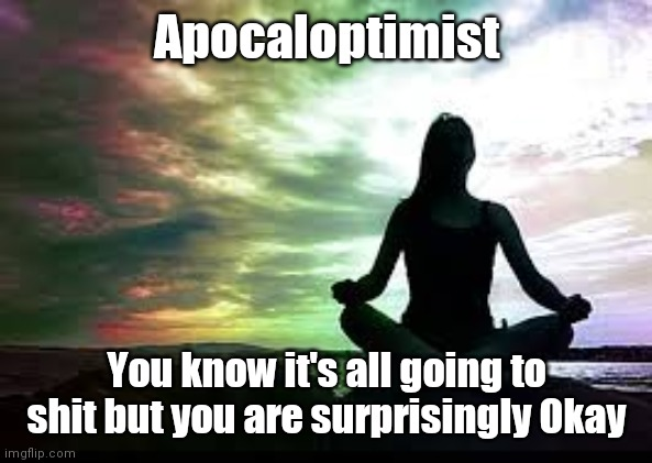 Apocaloptimist; You know it's all going to shit but you are surprisingly Okay | image tagged in yoga | made w/ Imgflip meme maker