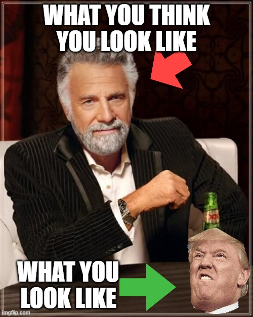 The Most Interesting Man In The World |  WHAT YOU THINK YOU LOOK LIKE; WHAT YOU LOOK LIKE | image tagged in memes,the most interesting man in the world | made w/ Imgflip meme maker