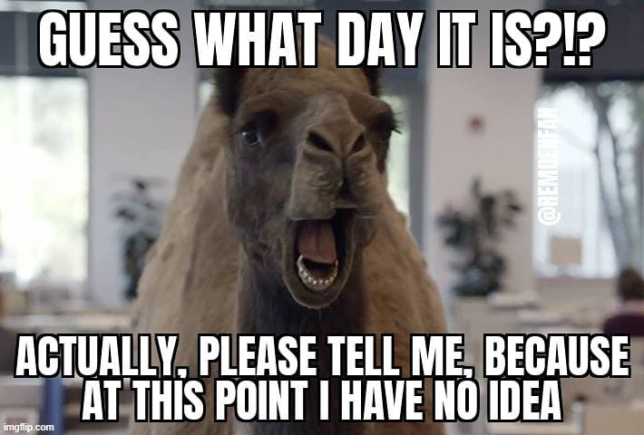Hump Dayyyy! | image tagged in hump day camel,wednesday,quarantine,cabin fever,memes | made w/ Imgflip meme maker