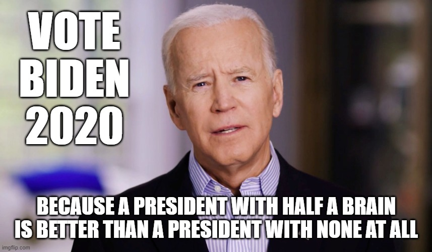 Joe Biden 2020 |  VOTE BIDEN 2020; BECAUSE A PRESIDENT WITH HALF A BRAIN IS BETTER THAN A PRESIDENT WITH NONE AT ALL | image tagged in joe biden 2020 | made w/ Imgflip meme maker